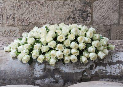 THE ELEGANT WHITE ROSE